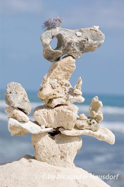 Moderne zeitgenössische Kunst - Land Art - Korallenstein - Berlin - Alexander Hausdorf